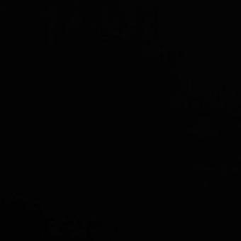 9005 - Klasyczna czerń